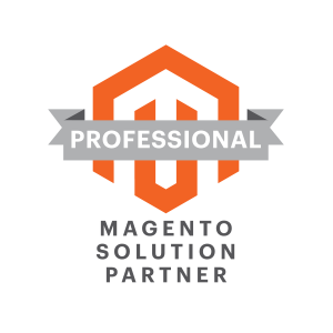Professional Magento Solution Partner