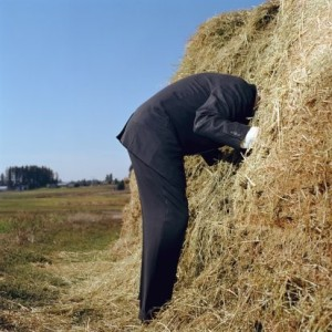 Microsoft Power BI: Finding the Needle in Your Haystack