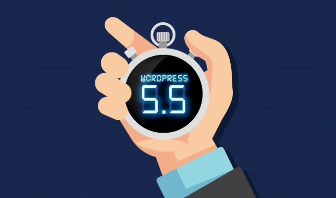 What We Think About  WordPress 5.5